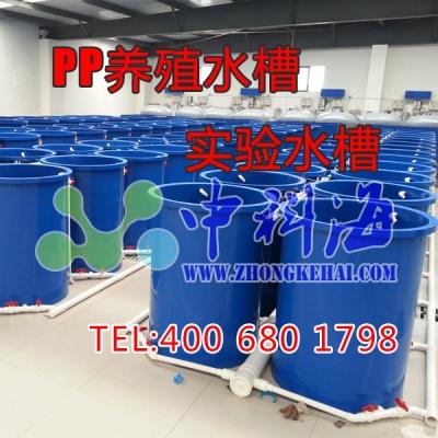 PP养殖水槽/PP实验水槽 (尺寸可自由定制)