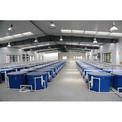 室内工厂化对虾养殖系统
